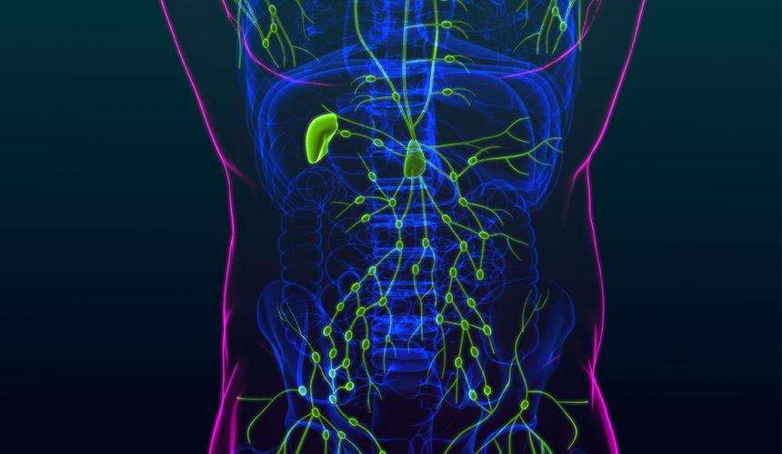 βιοψία λεμφαδένων
